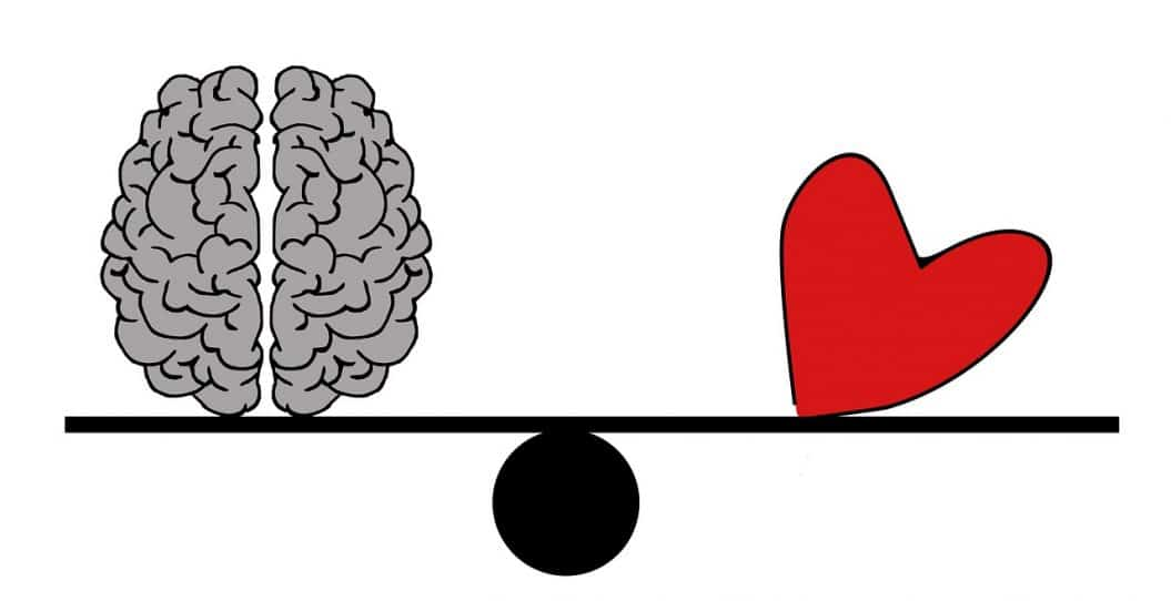 מוח ולב